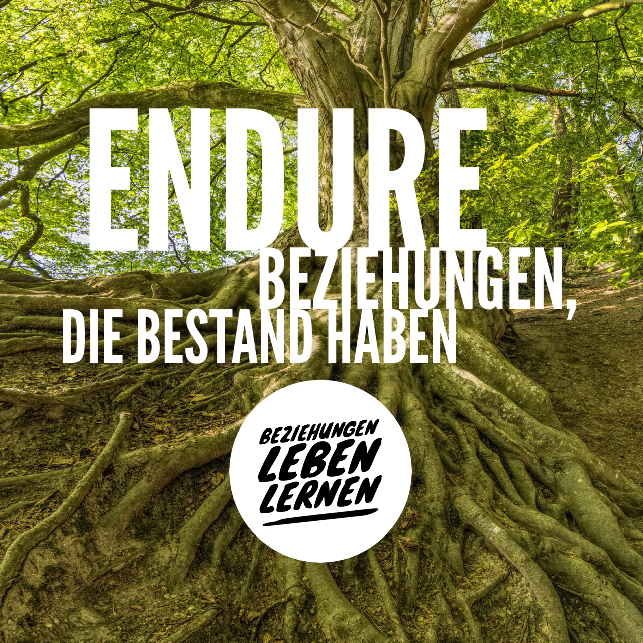 Endure - (1) Beziehungen leben lernen